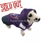New Pullover Style Dress Clothes with Hoodie for Pet Dog