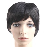 Straight Stylish Synthetic Hair Short Wigs Hairpieces