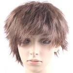 Synthetic Natural Short Straight Wigs Stylish Streaks Hairpiece