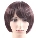 Synthetic Natural Short Straight Wigs Swept Bangs Hairpiece